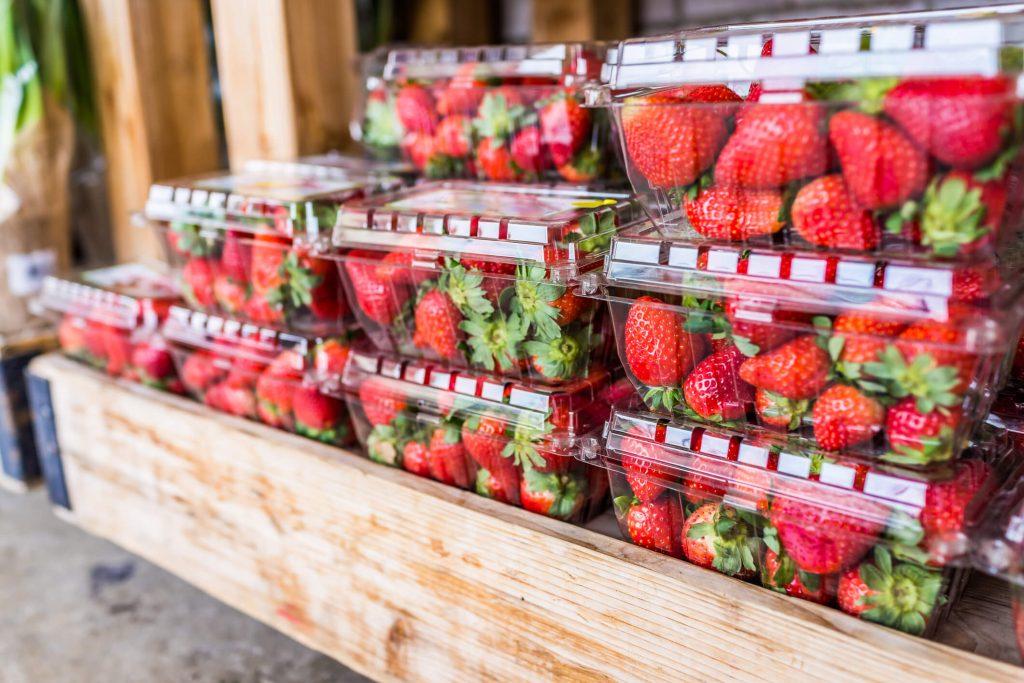 embalagem logística dos alimentos previne perdas